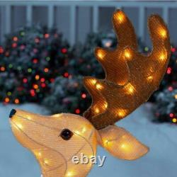 8.5ft LED Rudolph Reindeer Santa's Sleigh CHRISTMAS OUTDOOR holiday Yard Decor
